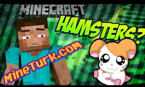 hamstermod