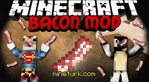 baconmod
