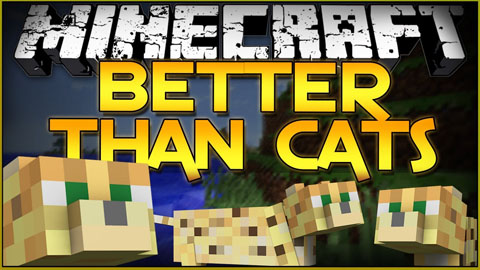 http://www.img2.9minecraft.net/Mod/Better-Than-Cats-Mod.jpg