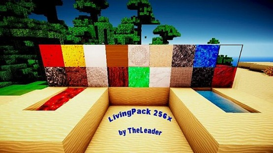 http://www.img3.9minecraft.net/TexturePack/Livingpack-realism-resource-pack.jpg