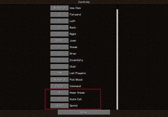 http://www.img2.9minecraft.net/Mod/Better-PvP-Mod-3.jpg