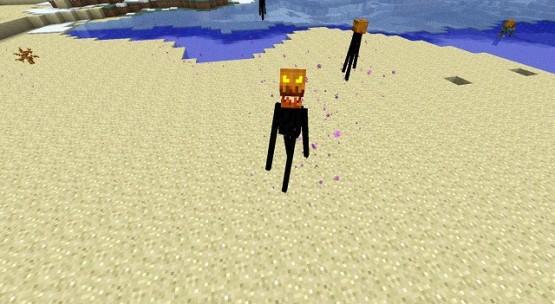 http://www.img3.9minecraft.net/TexturePack/Pumpkin-Patch-Texture-Pack-5.jpg