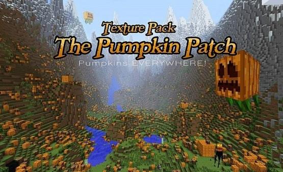 http://www.img3.9minecraft.net/TexturePack/Pumpkin-Patch-Texture-Pack.jpg