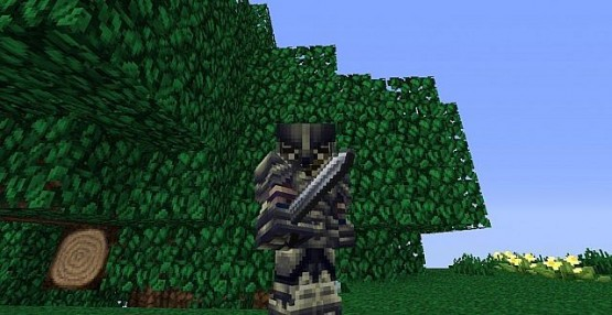 http://www.img3.9minecraft.net/Resource-Pack/The-arestians-dawn-rpg-3.jpg
