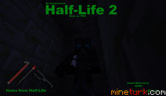 http://www.img2.9minecraft.net/Resource-Pack/Half-life-2-resource-pack-1.png