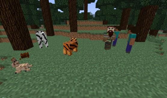 http://www.img.9minecraft.net/Mod/More-Mobs-Mod-1.jpg