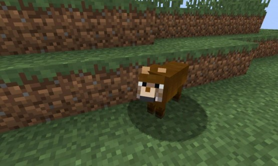 http://www.img.9minecraft.net/Mods/More-Wolves-Mod-5.jpg
