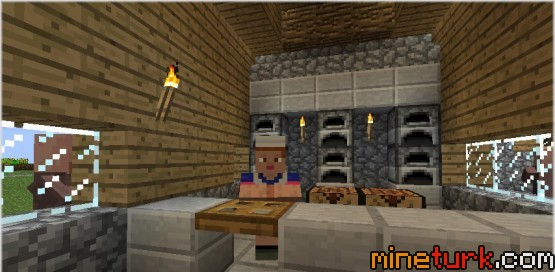 Village-Taverns-Mod-Screenshots-5