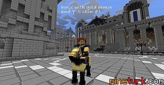 http://www.img3.9minecraft.net/Resource-Pack/Y-5-Pack-3.jpg