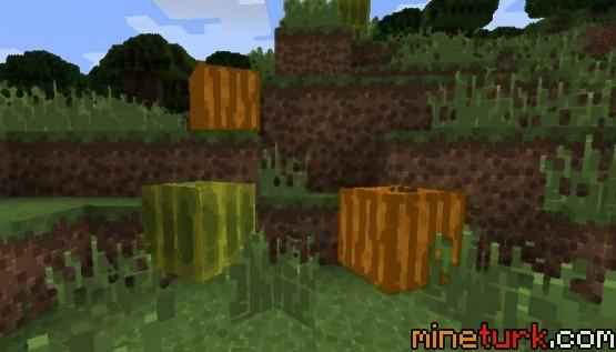 The-Living-Blocks-Mod-2.jpg