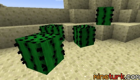 The-Living-Blocks-Mod-3.jpg