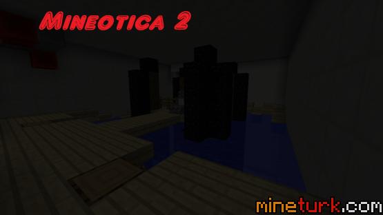 mineotica-2 (4)